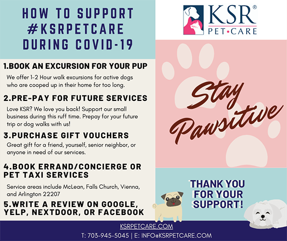 How to support KSR Pet Care
